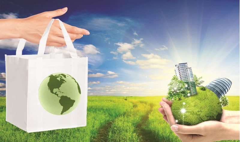 Các Doanh Nghiệp Đẩy Mạnh Việc Áp Dụng Sản Xuất Sạch Hơn Trong Ngành Bao Bì Và Ngành Giấy