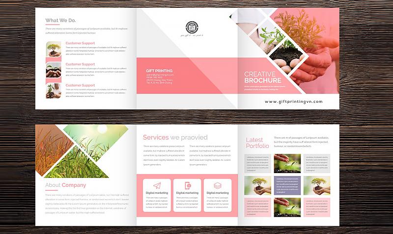 nội dung của một brochure