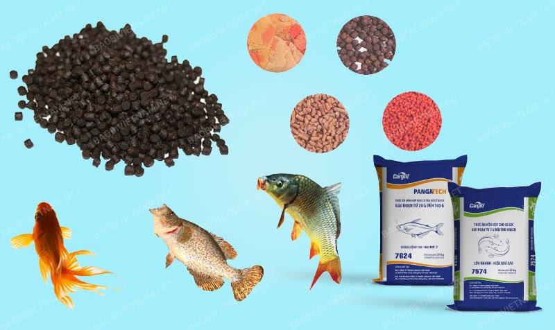 Bao bì thức ăn thủy sản – Đảm bảo an toàn trong chăn nuôi