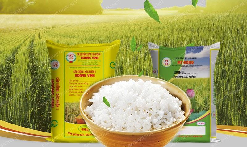 Bao bì đựng lúa gạo thân thuộc với mọi người