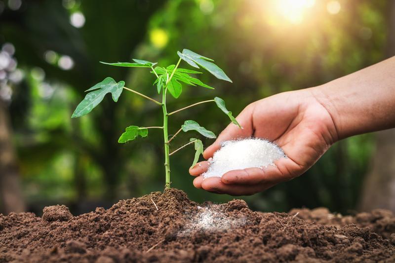 phân bón là một thành tố không thể thiết trong trồng trọt